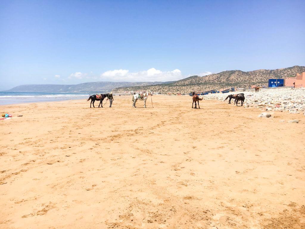 Paradis Plage in Marokko
